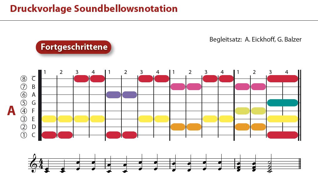 Twinkle, twinkle little Star / ABC-Lied / Morgen kommt der Weihnachtsmann - Klassenmusizieren